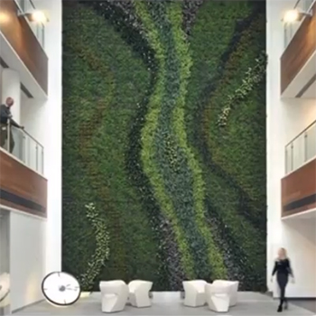 A Study: Optimum Lighting for Plant Walls